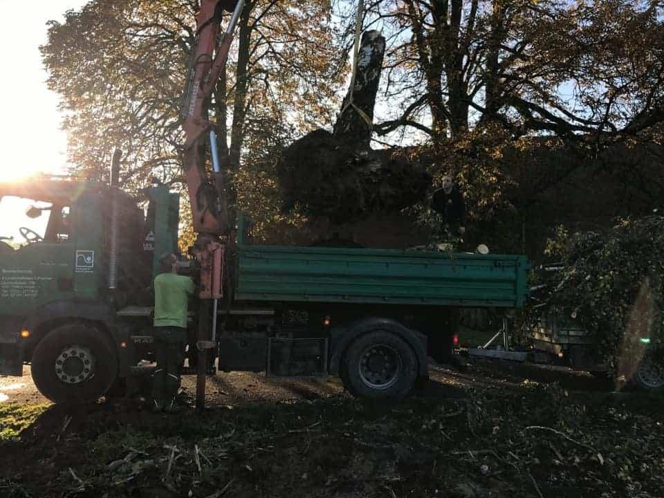 Baumarbeiten-3