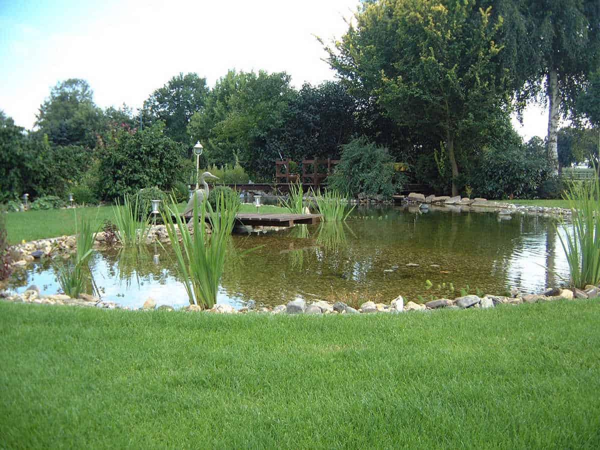 Teichbau im Grünen (4)